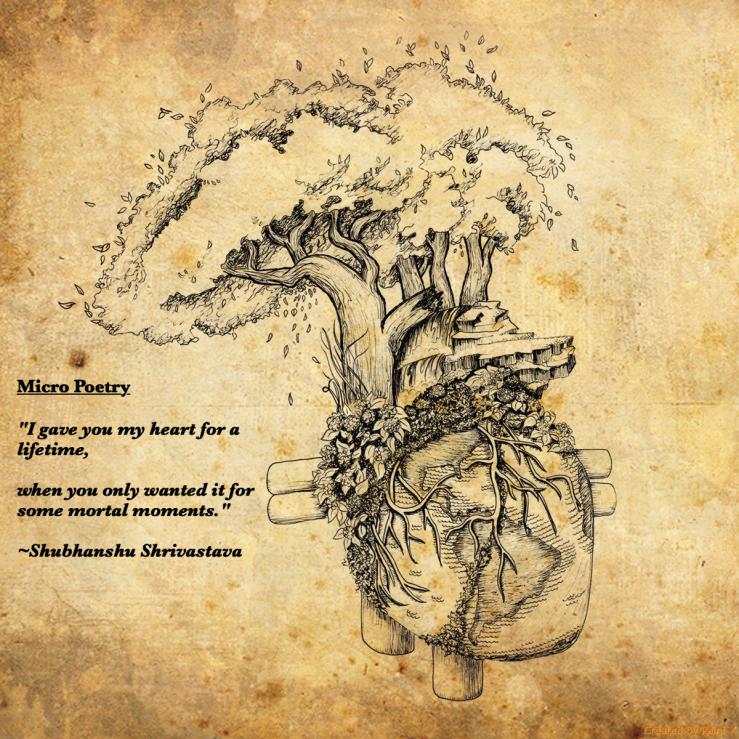 heart micro
